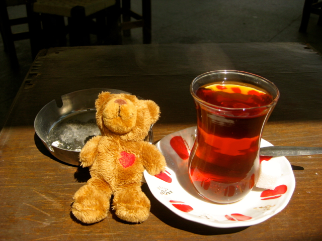bear bear drinking turkish tea