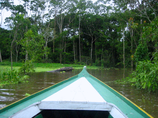 Amazon Adventure in Brasil