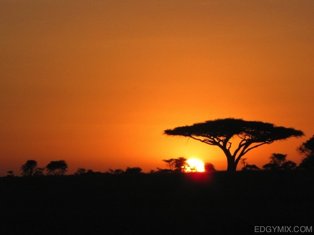 Beauitful Sunrise in Kenya
