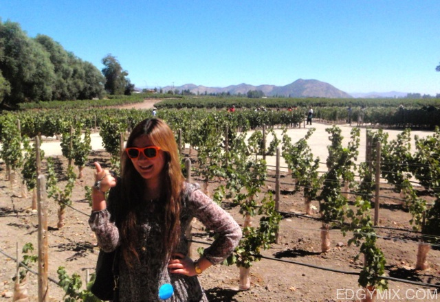 Edgymix-at-winery-Chile