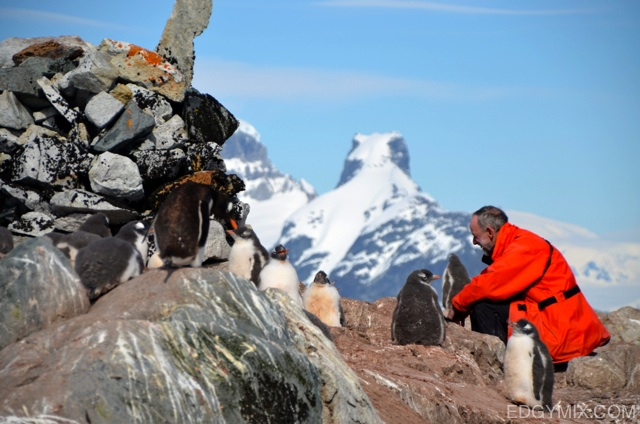 HUman and Penguin in Antarctica