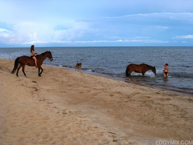 horsebacking riding in lake malawi