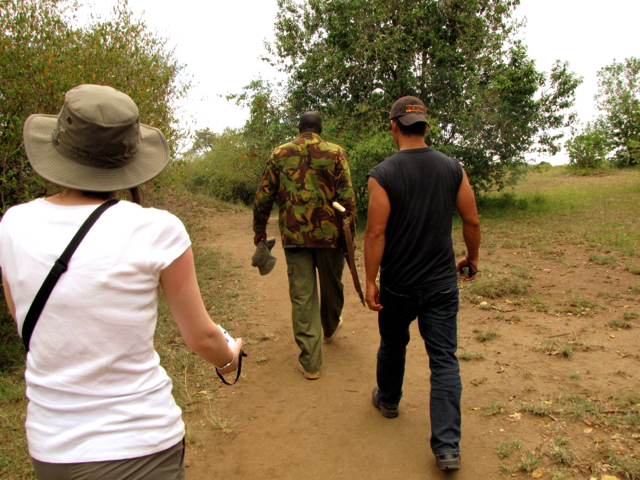 Going on a safari in Kenya