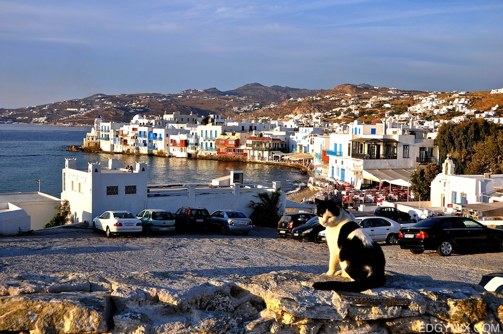 Cats view of Mykonos, Greece