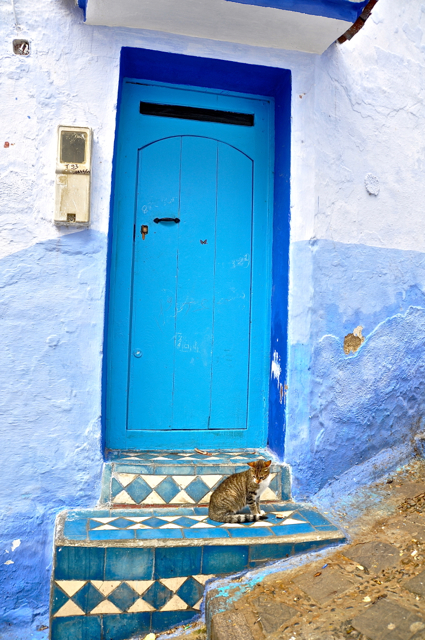 blue houses at chefchaouen morocco