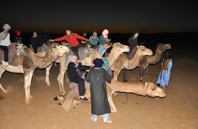 riding camel in the dark, morocco