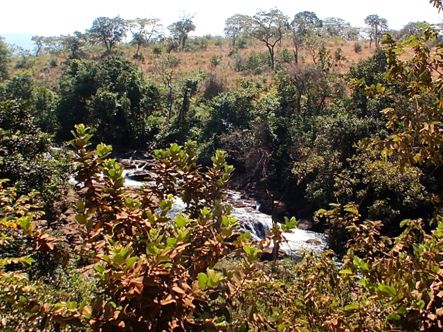 beautiful-river-in-guinea