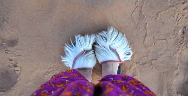 camel slipper from morocco