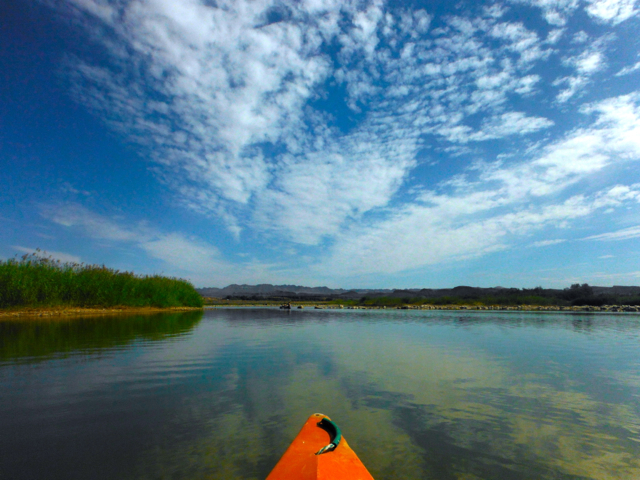 canoeing at orange river