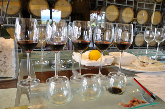 wine and olive oil tasting-south africa cape town